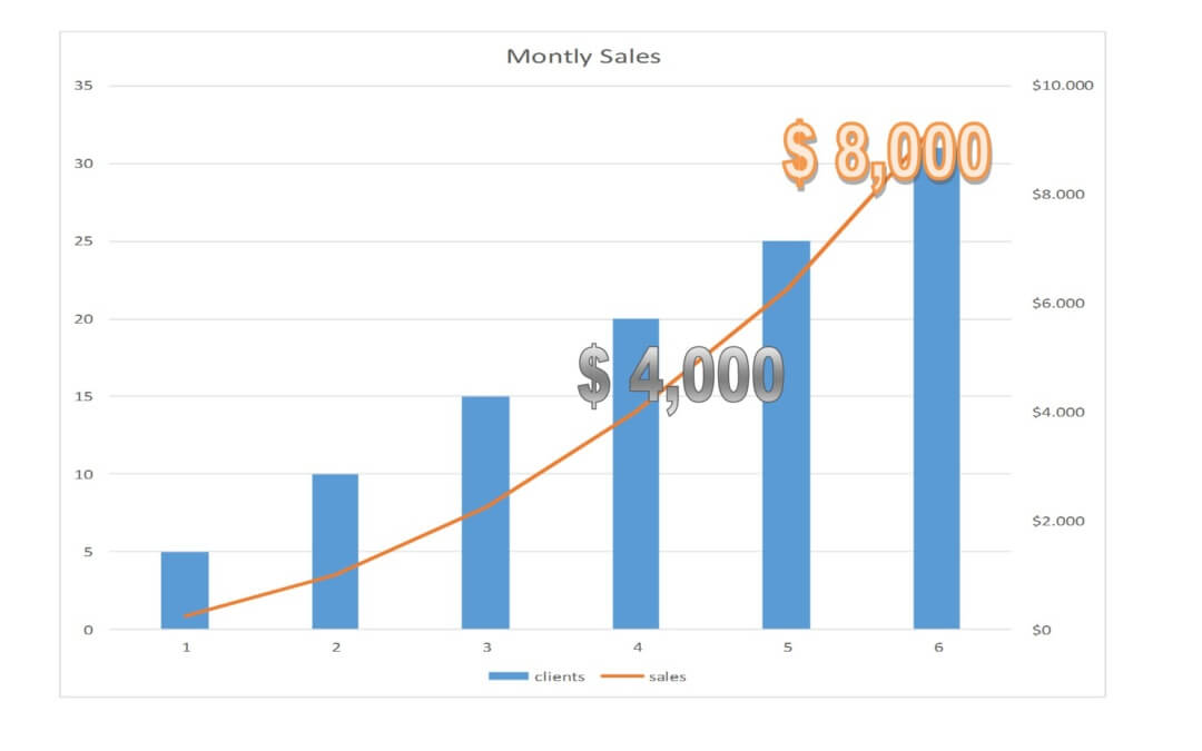 Grow your hair business faster sell more than $ 4,000 a month